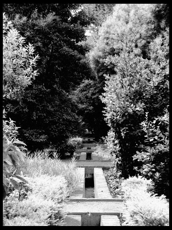 En el Botánico (I)
