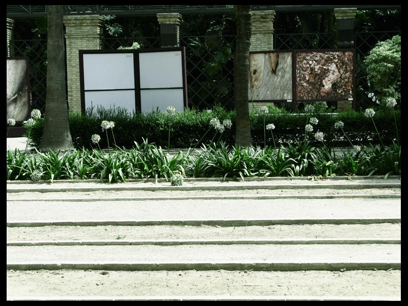 Botánico (VI)